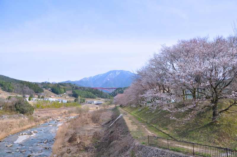 今日の恵那山 おちあい桜が咲き出した。 border=