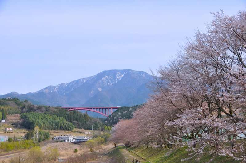 中津川「栗百菓-5」 border=