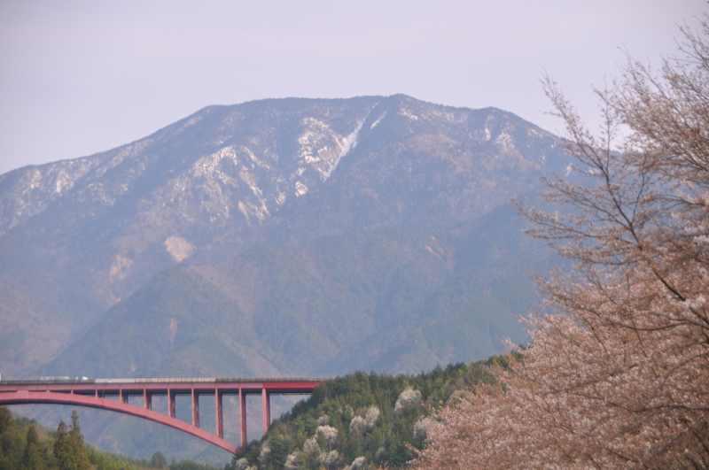今日の恵那山 おちあい桜が咲き出した。