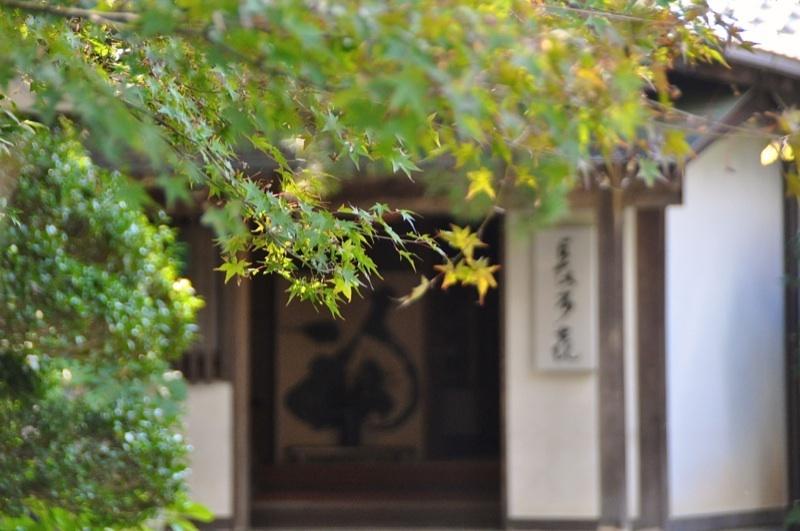 長多喜「彩りの秋」の 始まり
