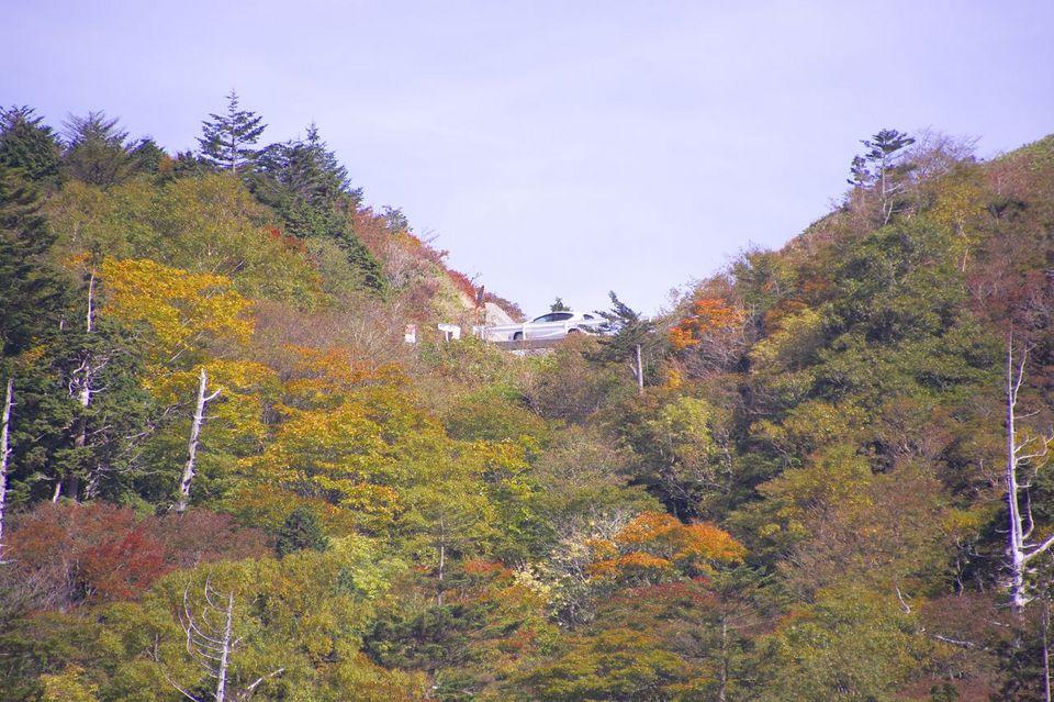 富士見台高原の紅葉は始まっていた。10/11 撮影