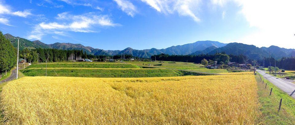 霧が原からの稲田と恵那山、美しい日本の風景。 10/17 Iphone Panorama
