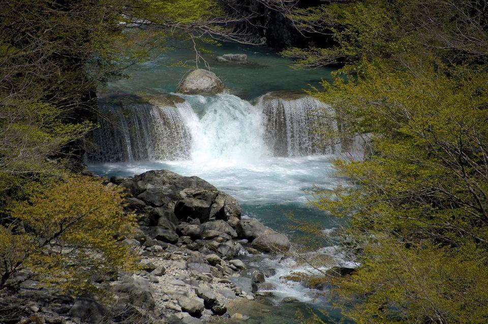 付知峡本谷の春