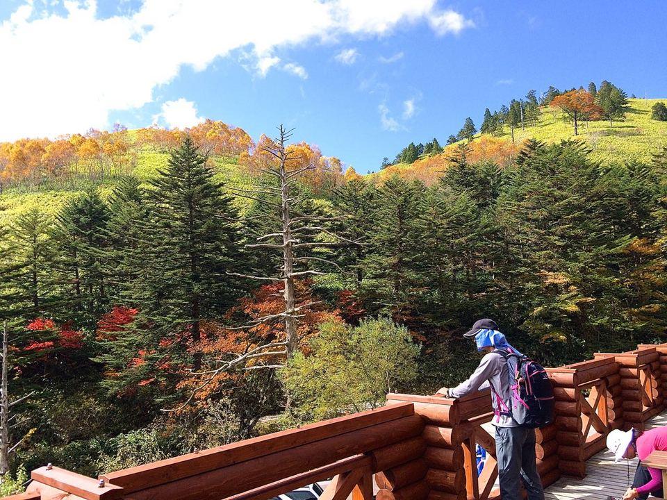 富士見台高原、紅葉MAX の万岳荘へ行ってきました。 border=