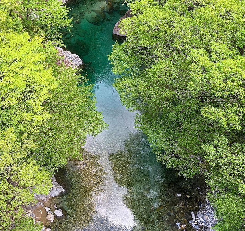 緑の王国 付知峡