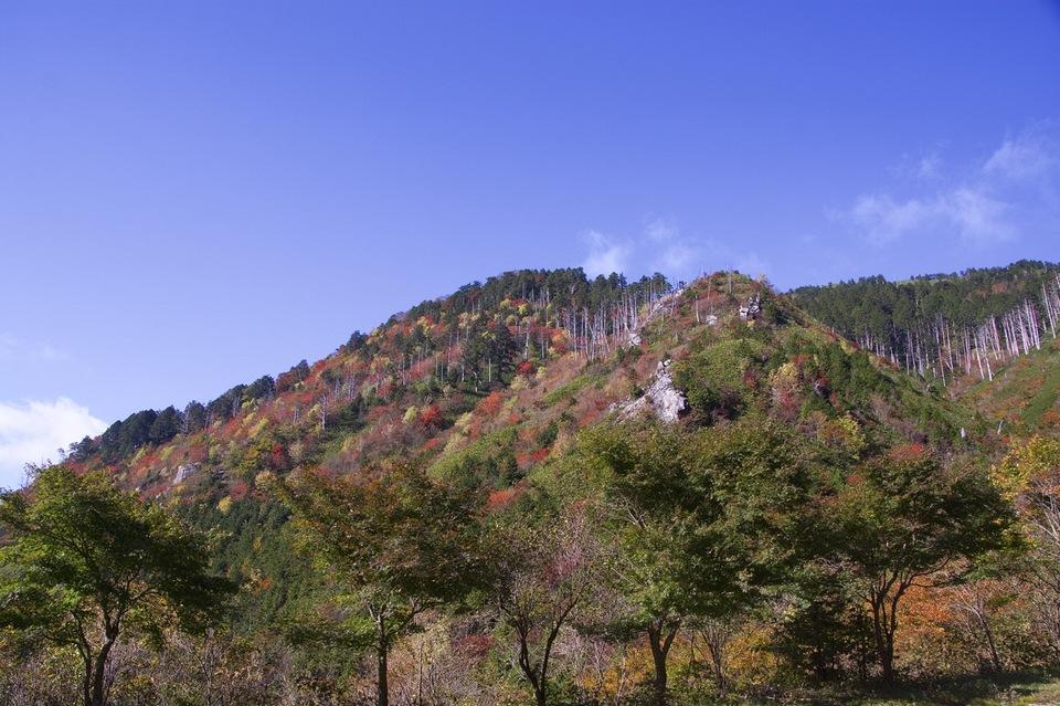 富士見台高原の紅葉始まる。 border=