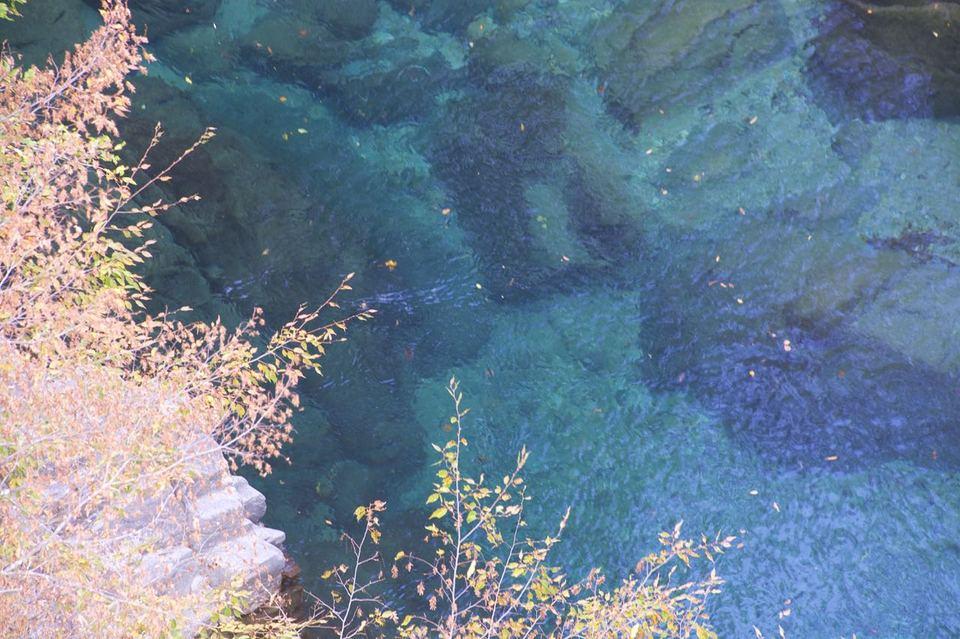 中津川市付知峡攻め橋の紅葉始まる。