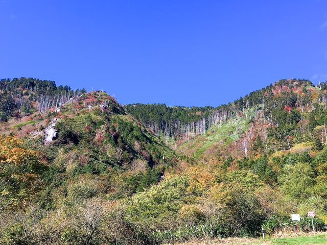 富士見台高原紅葉始まる。 border=