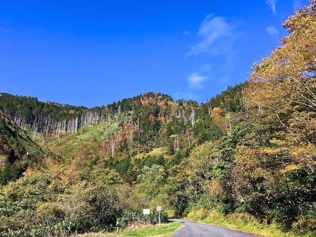 富士見台高原紅葉始まる。