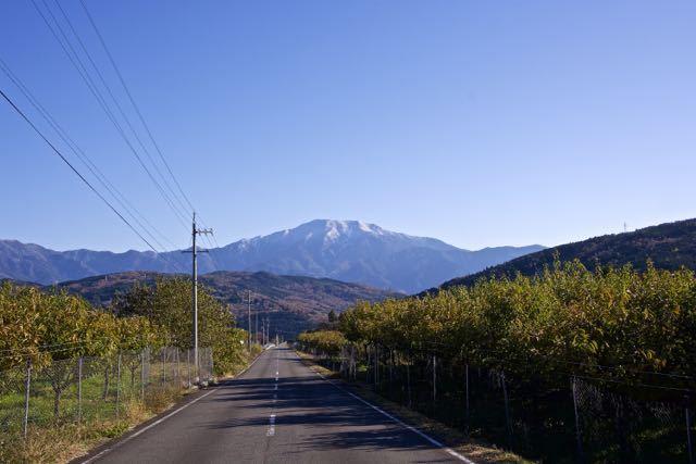 中津川の恵那山 20 9~12 11月21日撮影