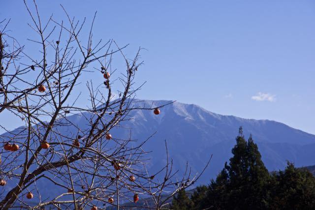 恵那山と残り柿・木守り柿