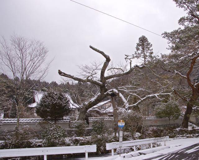 雪のお地蔵さん