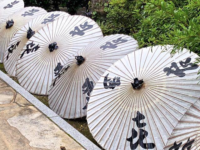 夜がらす山荘 長多喜の番傘干し。