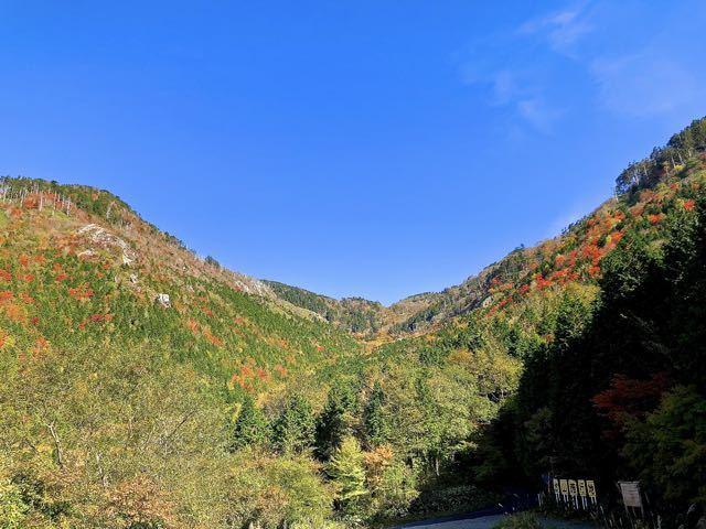 #富士見台高原神坂峠の紅葉、大檜の駐車場から。今週中が見頃 border=