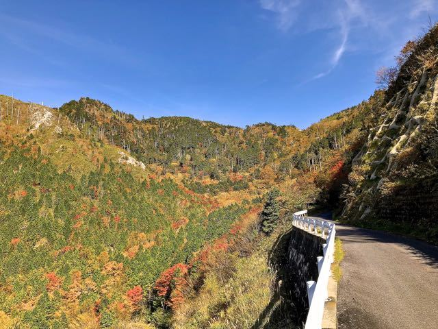 富士見台高原神坂峠の紅葉、水跨ぎ付近標高1500m程。