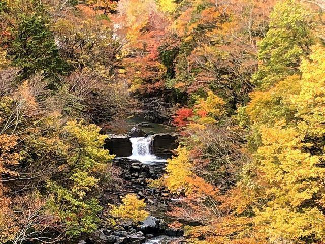 付知峡本谷渓谷の紅葉とエメ水。 border=