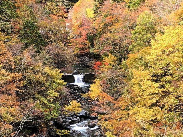 付知峡本谷渓谷の紅葉とエメ水。