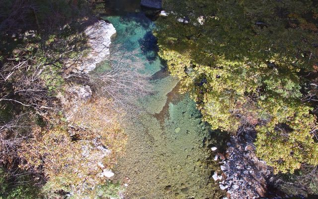 付知峡攻め橋のエメ水に浮かぶ落葉