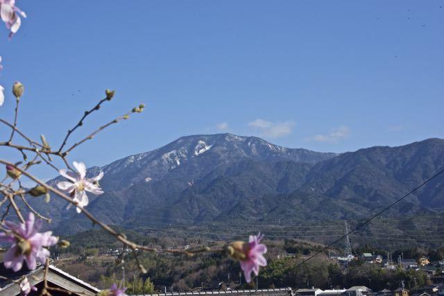 恵那山とシデコブシ