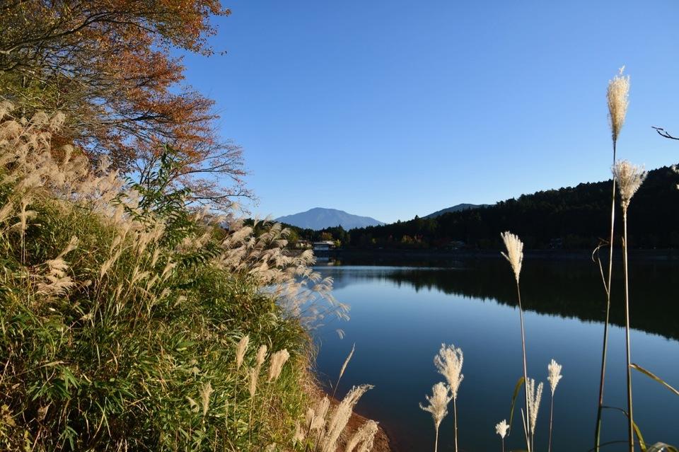 ススキと椛の湖と逆さ恵那山、晩秋の長閑な風景。 border=