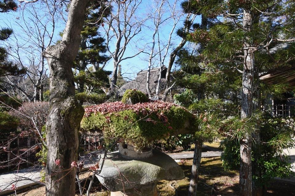 苔灯篭にもみじ葉と茅葺宿、日本の里山の風情。 border=