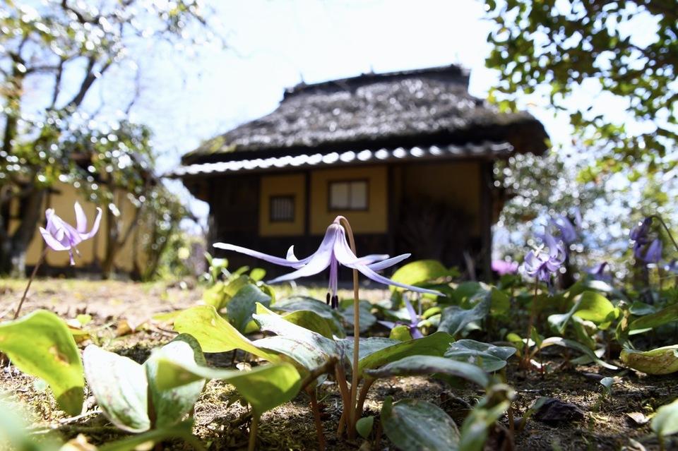 夜がらす山荘 長多喜の春爛漫