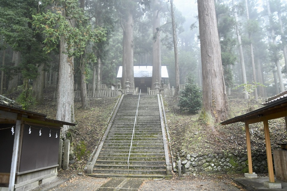 立冬の冷たい雨に煙る恵那神社本殿と千年杉。 border=