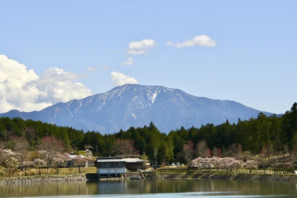 百名山恵那山と水温む四月の椛の湖、桜咲く風景。