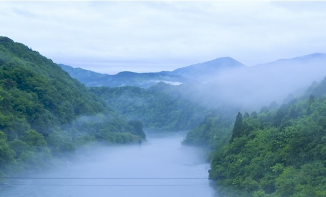 梅雨入りの木曽川、川霧に浮かぶ旧玉蔵橋の亡霊(橋脚)