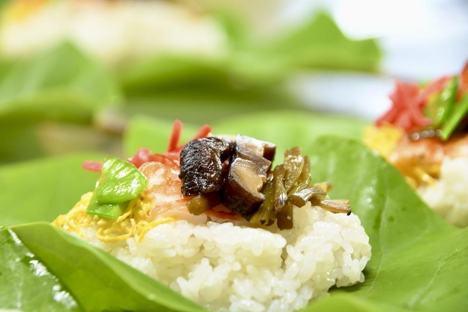 ホオバの葉がシッカリして来ました、初夏の中津川長多喜名物「朴葉寿司」始まる。