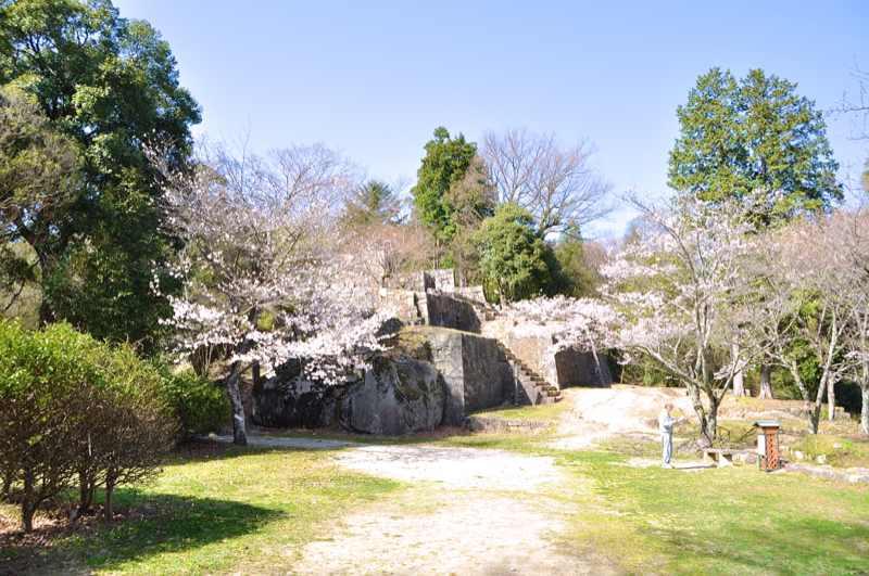 春爛漫の苗木城跡 2