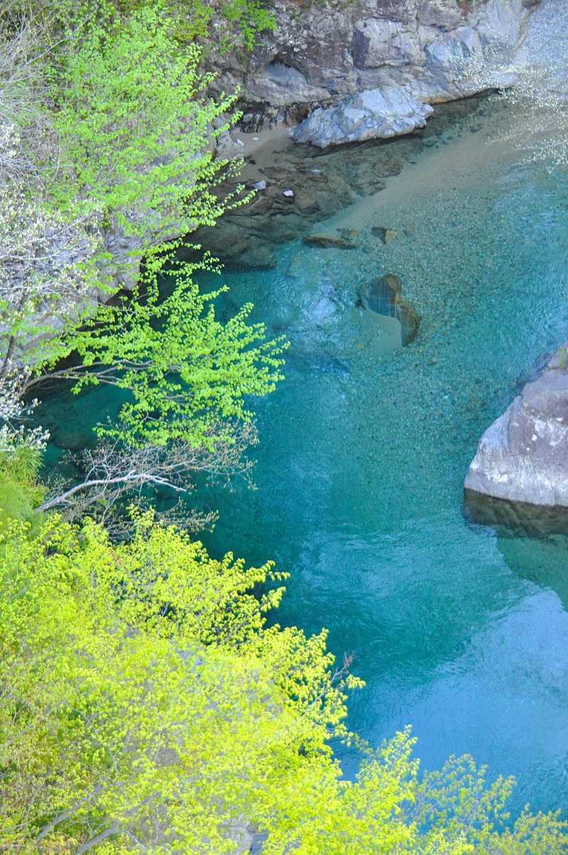 ここで深呼吸! 若葉の緑と水の碧 付知峡攻め橋