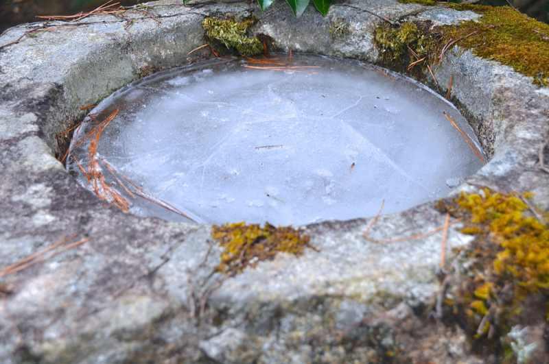 凍みる朝、本日「大寒」