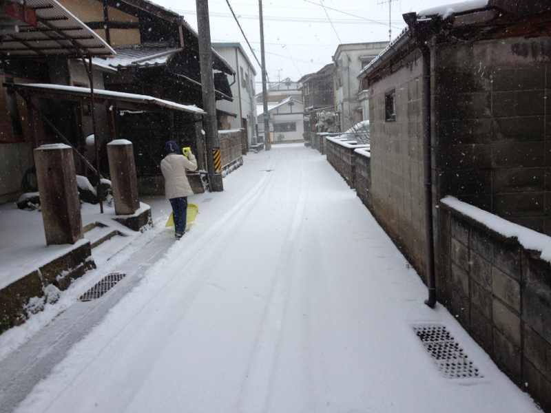 今年初の雪かき真っ最中‼