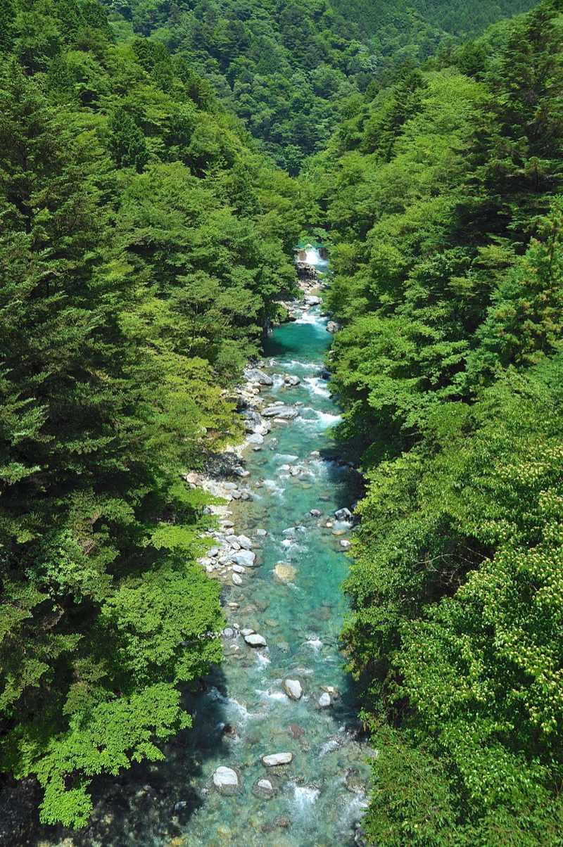 ここには手つかずの大自然がある、付知峡本谷 border=