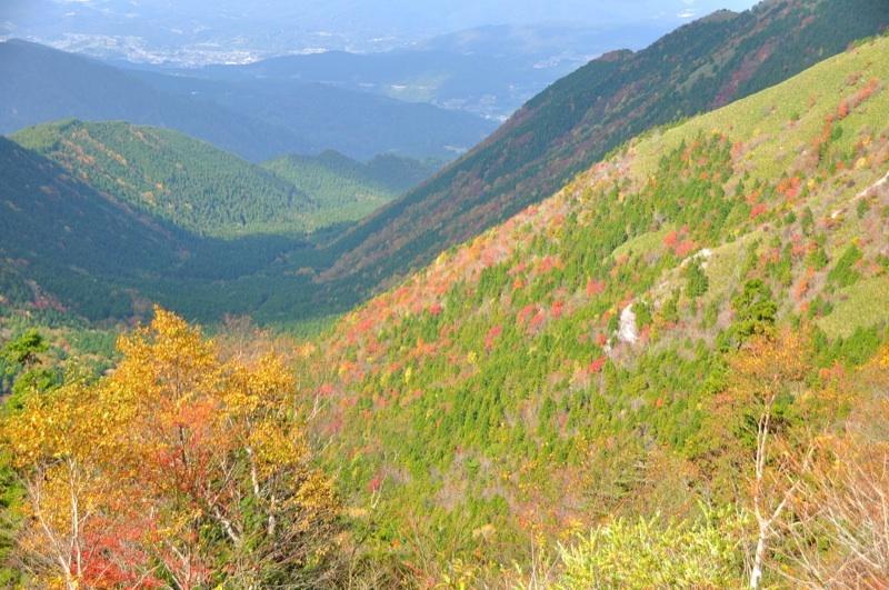 絶景!富士見台高原の紅葉。標高1000~1400付近