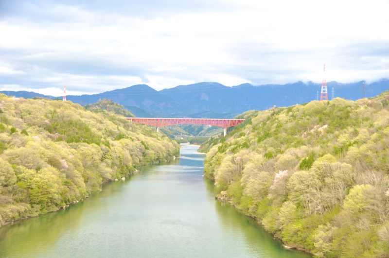 萌える新緑、美恵橋からの木曽川河畔。 border=