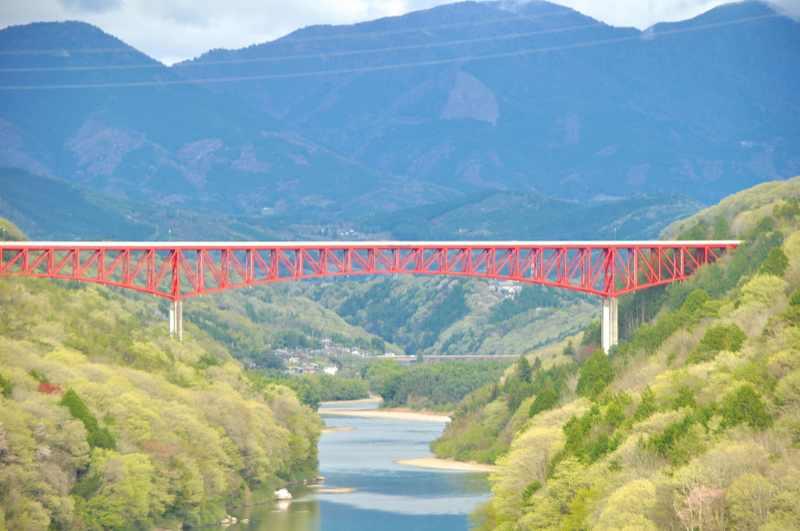 萌える新緑、美恵橋からの木曽川河畔。