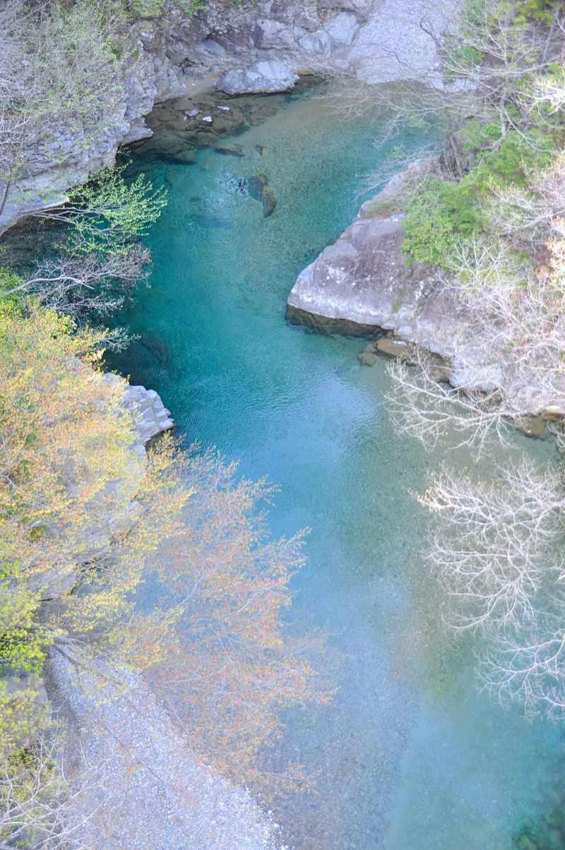 芽吹きの攻め橋、水面は碧。
