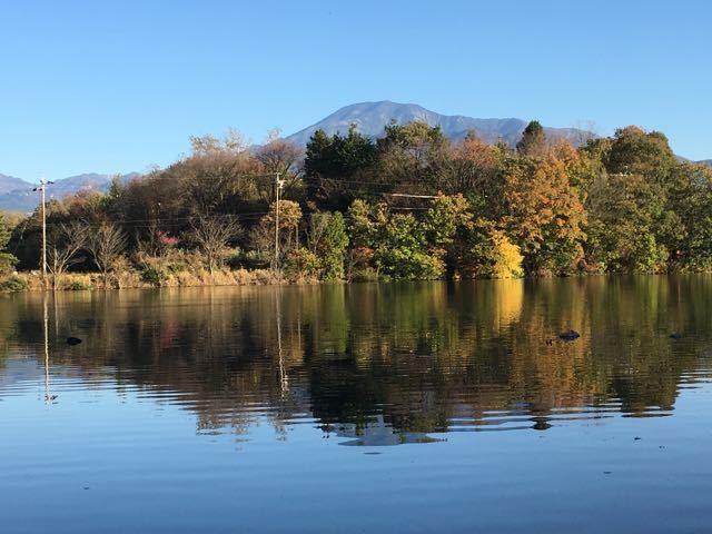 今日は立冬、中津川は紅葉真っ盛り。