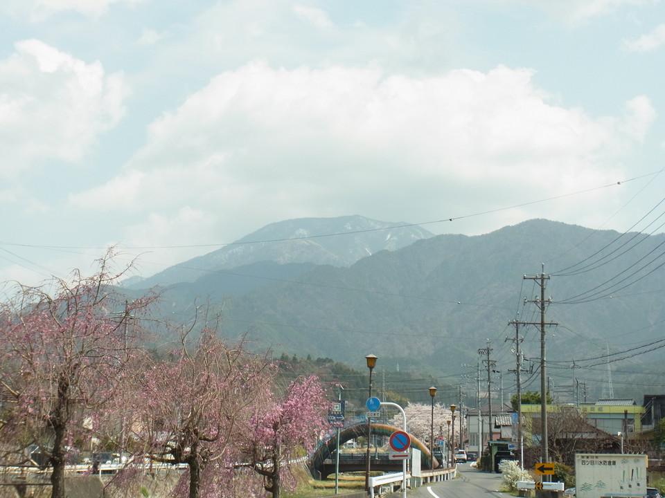 四ツ目川沿いの桜並木と恵那山 border=