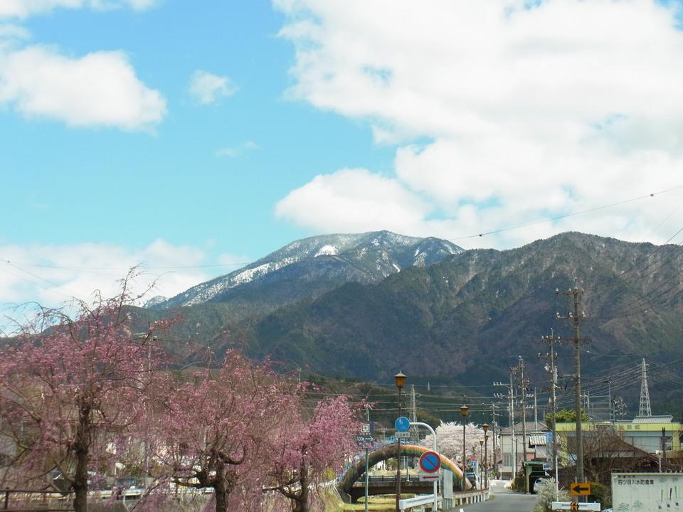 満開の桜と雪が残る恵那山