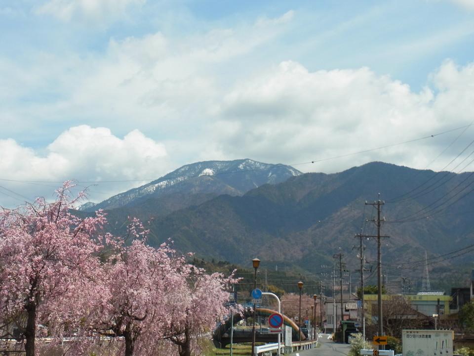 まだまだ恵那山と桜