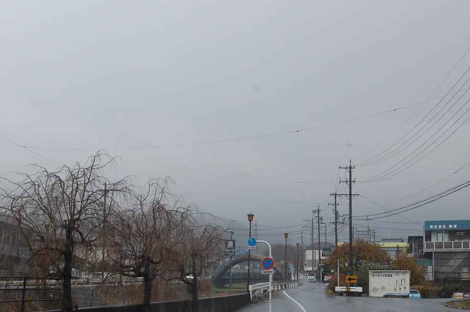 冷たい雨が降っています