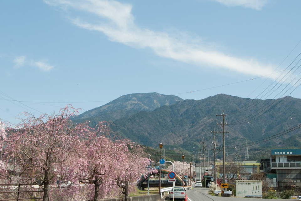恵那山・桜・青い空