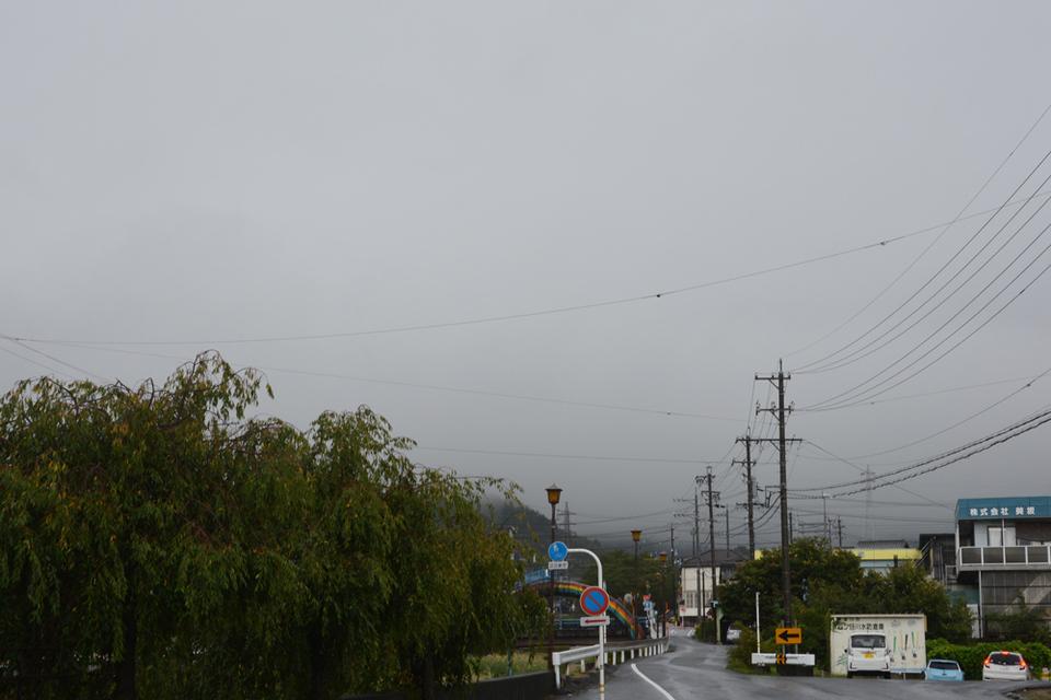 今日はず〜っと雨