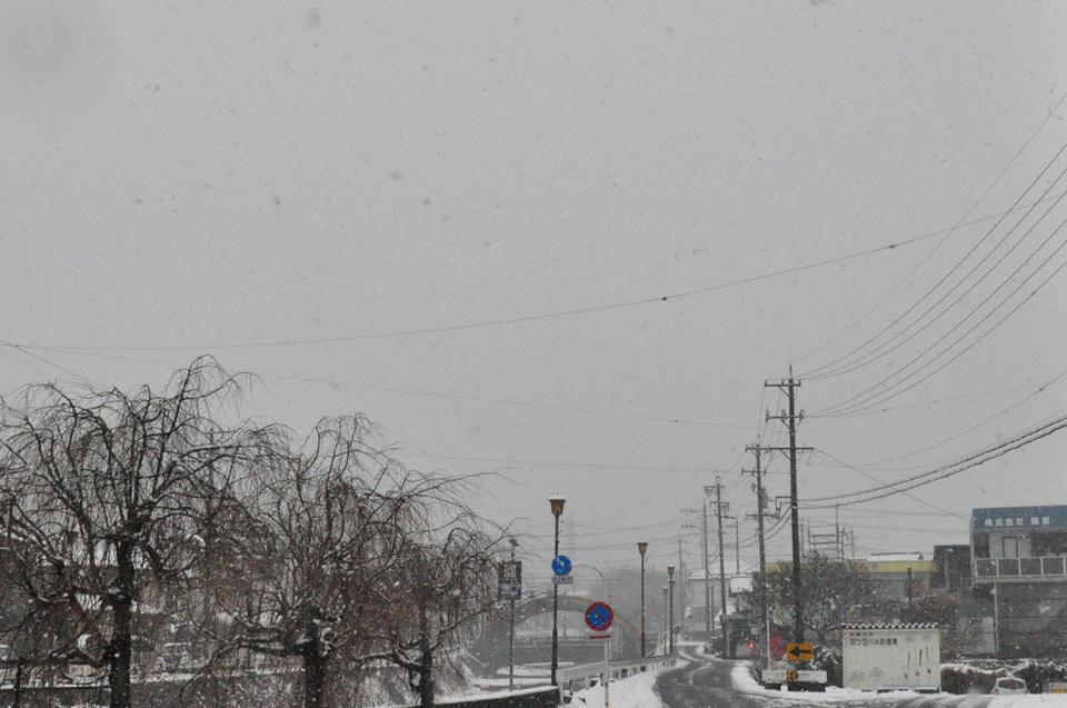 雪!雪!すっごい雪!