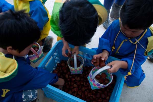 http://enasan.net/news/images/img_20140905121756.jpg