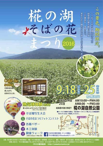 【椛の湖そばの花まつり2016】この景色、期間限定!岐阜県最大級のそば畑が満開を迎えます。