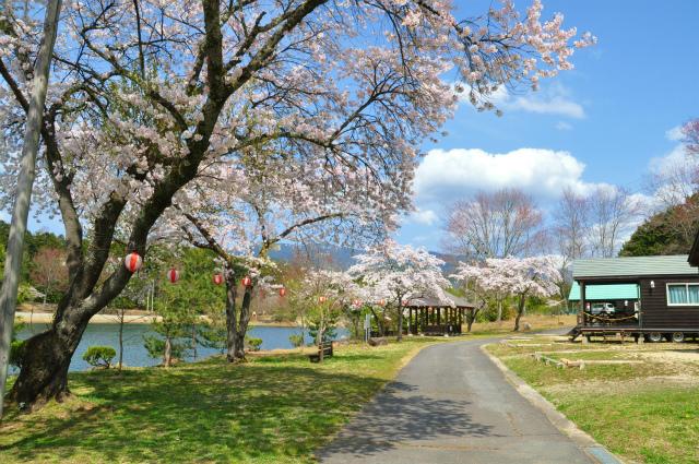 【4月のイベントガイド】 中津川市内の主なイベントをご紹介します。 border=